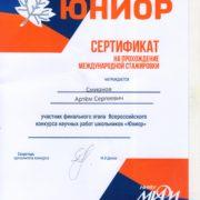 юниор Смирнов Артем